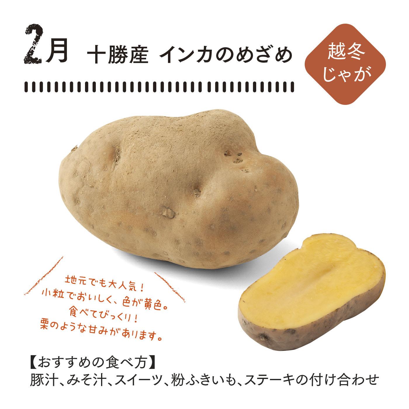鮮やかな黄色が特徴で、糖度が高く、さつまいものような食感。上手に冷蔵保存すると春までもちます。 ■セット内容/Mサイズ2㎏(30~45玉程度)