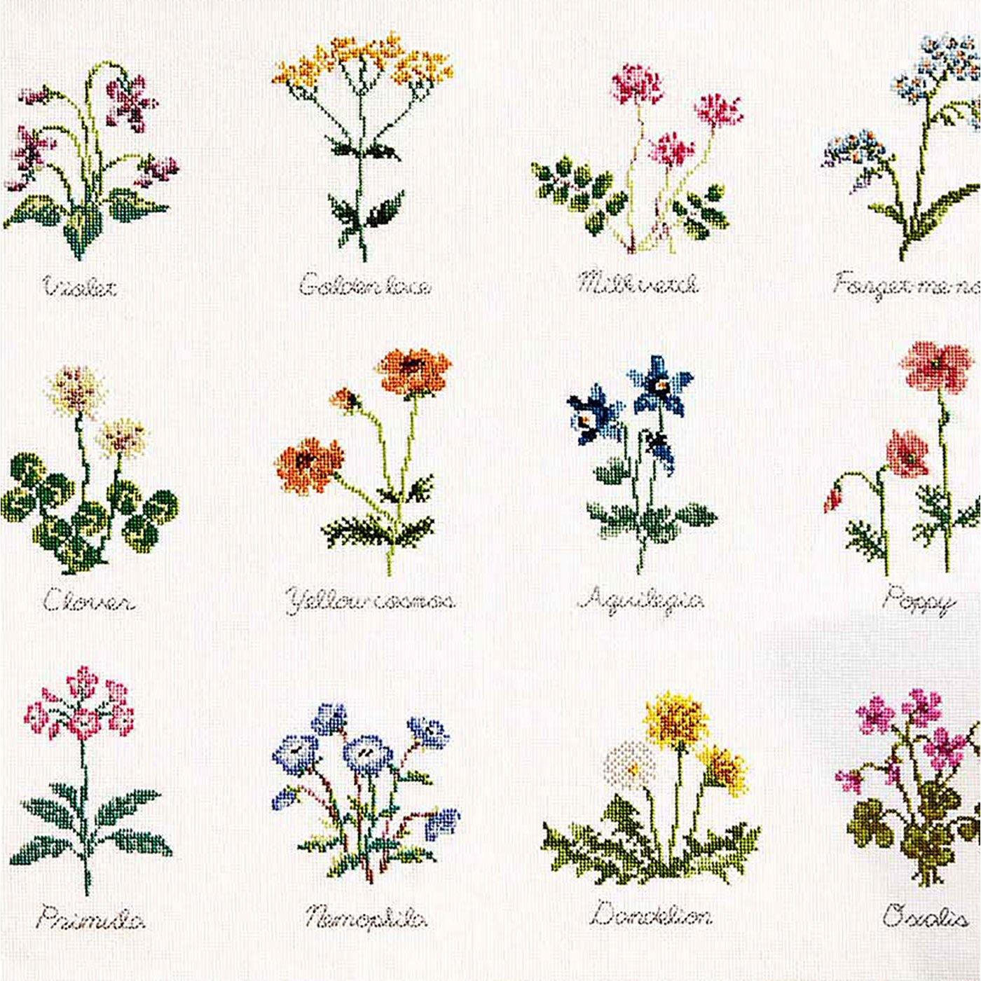 素朴な野の花を刺し描く クロスステッチサンプラーの会