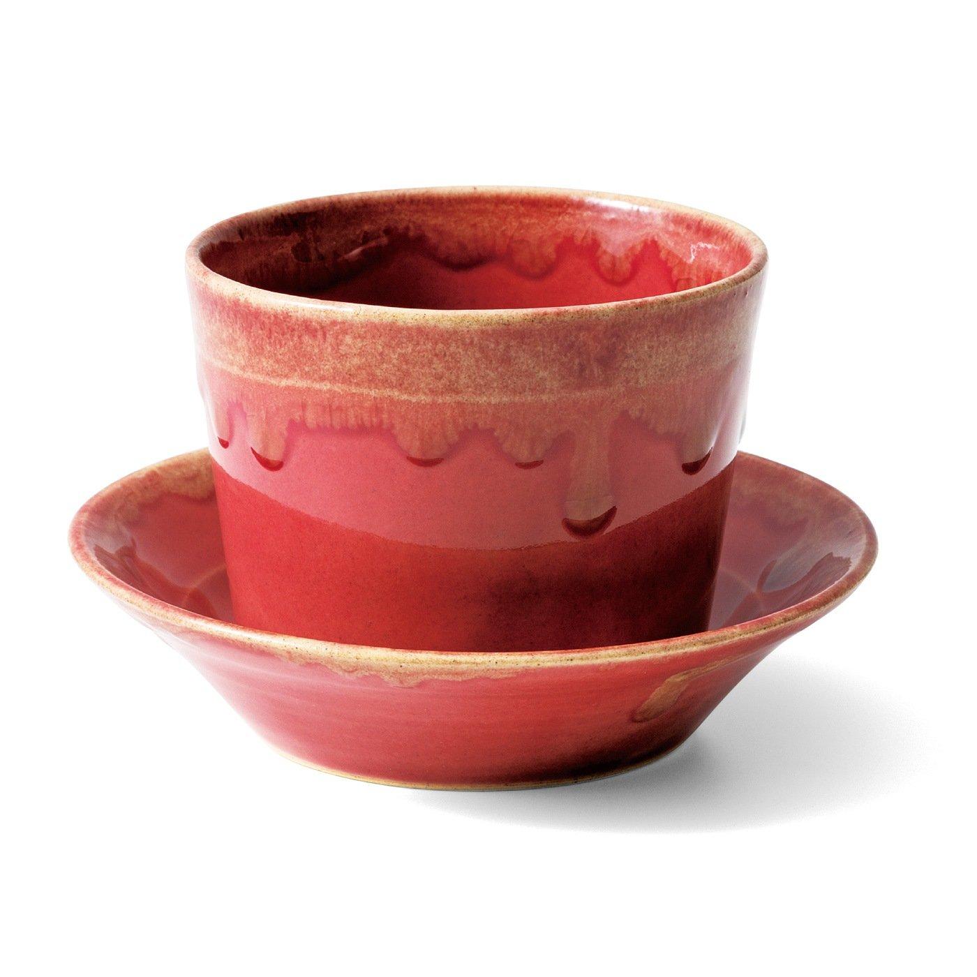 手のひらサイズで毎日愛でたい 波佐見焼マルチカップ&ソーサーの会(4回予約)